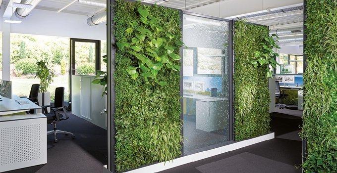 groene kantoormuren met planten